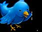twitter_badge