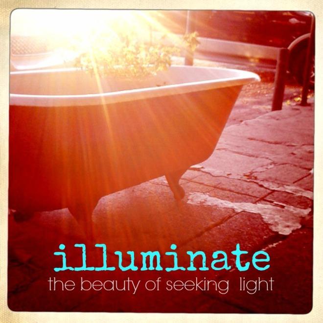 illuminate the beauty of seeking light e-course