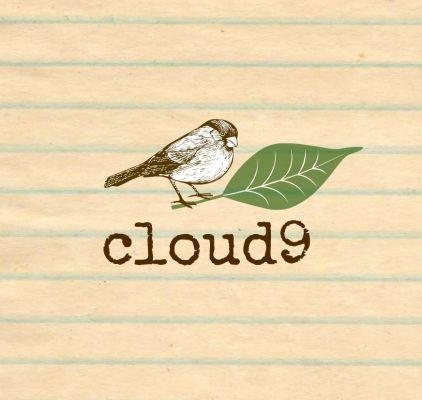 cloud9.01